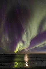 One more night walk at the beach. (Kjartan Guðmundur) Tags: iceland auroraborealis northernlights moon reflection reykjanes ocean outdoor stars sky tokinaatx1628mmf28profx canoneos5dmarkiv kjartanguðmundur arctic photoguide tourguide