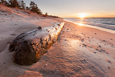 _DSC2663 (phatwhistle) Tags: lakemichigan log grandtraversebay wood tree beach sand water landscape seascape leelanau sunrise michigan tokina wideangle