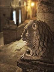 the lion sleeps tonight (ilMarioZ) Tags: hipstamatic iphone7plus gothic gotico cathedral duomo abruzzo teramo