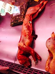 Barcelona (2015) (alexismarija) Tags: barcelona spain catalonia catalunya europe laboqueria laboqueriamarket food foodmarket market meat