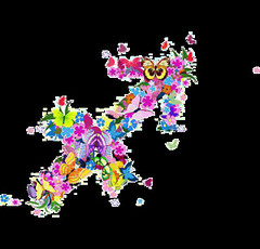 #Sagitario del 10 al 16 de abril (tarotsombreromagico) Tags: angeles arcángeles arcanos bastos brujería caldero copas diario dinero duendes escoba espadas fases fortuna fuego futuro gnomos hadas hechizos horoscopo lenormand luna marsella mensual numerología oraciones oros ouija péndulo raider sagitario salud santos semanal sol tarot velas zodiaco