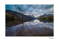 Lone Tree (Paul Compton (PDphotography)) Tags: dinorwic snowdon snowdonia welsh hiking landscape llanberis miners photography quarry slate wales walking lone tree llynpadarntree padarn lakes lake reflections reflection sky mountain clouds sun morning classic