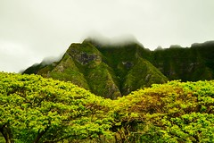 Skull Island (jijake1977) Tags: hawaii king kualoa jungle oahu