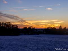 Nationaal park de Veluwezoom, sunrise (Nelleke C) Tags: 2017 nationaalparkdeveluwezoom gelderland landscape landschap nederland netherlands sneeuw snow sunrise veluwezoom winter zonsopkomst