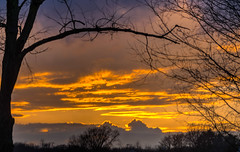 Fit for Framing (tquist24) Tags: goshen hdr indiana nikon nikond5300 clouds evening orange silhouette sky sunset tree trees