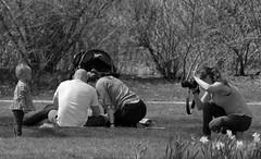 People, Family.  Cantigny Park. (EOS) (Mega-Magpie) Tags: canon eos 60d people family man woman child photographer cantigny park dupage il illinois bw monochrome black white outdoors outdoor usa america flowers wheaton