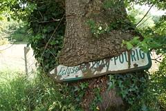 Arbre-pancarte (Moulin de Kergoniou, Châteauneuf-du-Faou, 29) (loïcborveau) Tags: bretagne finistère châteauneufdufaou pancarte insolite