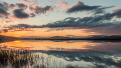 Forgotten (Jamie_Brannan) Tags: sunset sunrise river tay fife scotland landscape seascape cloud cloudporn sky skyporn reflection newburgh spring 2017 canon 70d