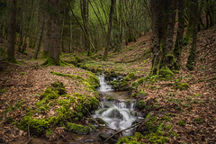Land of trolls and pixies (Thos A.) Tags: river stream longexposure nd trees tree forest water morvan bourgogne eos canon eos1200d 1200d natur nature woods waterfall eau cascade forêt bois rivière arbres