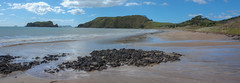 Opito Bay Coromandel (vicmarnz) Tags: coromandel hdr beach sand newzealand