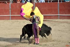 Toros - Carlos Domínguez (Antonio Miguel Sánchez Romero) Tags: toros plazadetoros tauromaquia carlosdomínguez torero