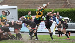840A0046 (Steve Karpa Photography) Tags: henleyhawks henley rugby rugbyunion game sport competition outdoorsport redruth