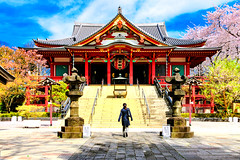 Meguro Fudo (Ryusen-ji Temple) : 目黒不動尊(瀧泉寺) (Dakiny) Tags: 2017 spring april japan tokyo meguro meguroward city street outdoor landscape temple architecture building plant tree flower cherry blossom cherryblossom someiyoshino yoshino nikon d7000 sigma 1770mm f284 dc macro os hsm sigma1770mmf284dcmacrooshsm nikonclubit