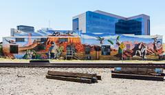 Borderlands Brewing Mural (katiemparker) Tags: tucson arizona mural streetart painting color urban