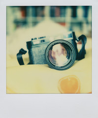 It's all about the gear (Istvan Penzes) Tags: color analog polaroid sx70 instant manualfocus aphog penzes canoscanlide700f impossiblepxcolorprotection