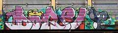 Dore (Prof. Mortus DeNali) Tags: street art bench mexico graffiti paint tag caps piece burner bomb freight throw krylon dore autorack rusto ironlak