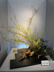 Japanese flower arrangement 49, Ikebana:  (Conveyor belt sushi) Tags: flower japanese ikebana   arrangement