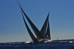 Palma SYC 2013 1 (Environmental Artist) Tags: blue sea cup sport race speed europe mediterranean sailing yacht super palma syc jclass bestofblinkwinners