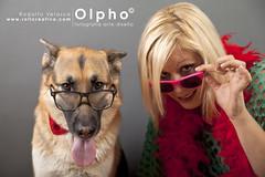 TRECE Y GEMA (OlphoMadrid) Tags: perro gafas pastoralemn posado canoneos5d perrocongafas rodolfovelasco artisval rollcreativo rollcreativocom fotomascotas