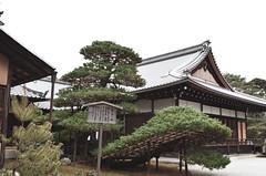 DSC_0068 (yolantasiu) Tags: nature japan architecture garden landscape temple kyoto buddhist zen 金閣寺 kinkakuji muromachi templeofthegoldenpavilion