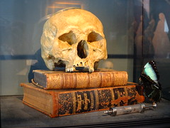 Memento Mori with 17th Century human skull (2013)