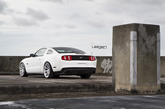 Ford Mustang GT 5.0 on Velgen Wheels VMB8 Matte SIlver (VelgenWheels) Tags: pictures auto white cars ford germany yahoo google sweden russia muscle low wheels performance www images fresh american mustang gt 50 rims sick coupe lowered bing exhaust concave svt stang gt500 whitecars velgen illest highrez velgenwheels vmb8