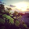 2013-08-09 - Dor Beach Weekend - Havi Bday 067