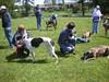 GreatBrookFarmMay92010019