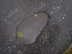 Face puddle (Eva the Weaver) Tags: puddle water leaf asphalt ground