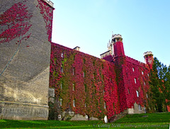 Study in scarlet (polymathmo) Tags: uk autumn cambridge red england nature architecture vines university