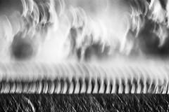 march of the poplars (nicola tramarin) Tags: camera longexposure trees blackandwhite bw italy tree monochrome alberi clouds landscape movement long exposure poplar italia nuvole albero paesaggio icm biancoenero pioppi poplars veneto intentional pioppo rovigo lungaesposizione polesine tramarin nicolatramarin