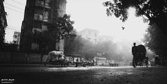 A Misty Morning... (Anirban Aurgha) Tags: life street morning mist misty canon dawn wide streetlife 1750 dhaka tamron bd bangladesh f28 ringexcellence dblringexcellence tplringexcellence