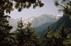 Lamjung Himal (peaks), Annapurnas round trek, Himalaya, Nepal, 2004 (mathieu.LM) Tags: nepal mountain 2004 pine analog forest trekking trek landscape peak round himalaya annapurna annapurnas canoneos300 himal lamjung
