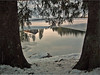 Reflection ... (ruschi_e) Tags: schnee trees sun snow reflection ice water schweiz switzerland wasser eis sonne bäume spiegelung hasliberg anawesomeshot ruschie bidmisee