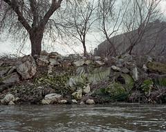 , (Andrs Medina) Tags: film nature analog spain 6x7 andresmedina