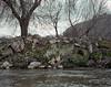 , (Andrés Medina) Tags: film nature analog spain 6x7 andresmedina