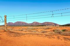 Flinders Ranges (john white photos) Tags: blue mountains fence desert flat australian dry australia bluesky outback remote southaustralia flindersranges wilpenapound {vision}:{outdoor}=099 {vision}:{beach}=0715 {vision}:{sky}=0895 {vision}:{sunset}=0536 {vision}:{car}=061