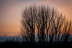 23022014-IMG_3634 (Michiluzzu) Tags: sunset torino tramonto turin sul monviso