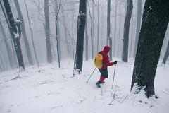 Balkan Mountain Wood, Bulgaria (Dankish) Tags: park wood winter mountain hiking central hut bulgaria national eho balkan