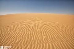 Kuwait - Alsalmi Desert - Clear Sky Over Sand Texture (Sarah Al-Sayegh Photography | www.salsayegh.com) Tags: desert kuwait الصحراء landscapephotography الكويت stateofkuwait كانون الرمال canoneos5dmarkiii canon5dmark3 wwwsalsayeghcom sarahhalsayeghphotography infosalsayeghcom