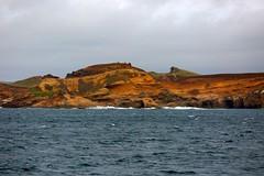 Chatham Island Coastal Landscape New Zealand
