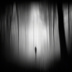 lost and all alone (Jon Downs) Tags: wood white black blur art monochrome silhouette canon downs photography eos one mono photo woods jon artist mood alone photographer image creative picture pic photograph concept conceptual 400d jondowns