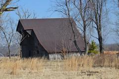 Marshall Co Kentucky Barn (Porch Dog) Tags: trees barn march kentucky grasses 2014 garywhittington draffenville nikon18300mm nikond7000 marshallcokentucky