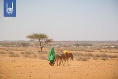 2017_Somalia Famine_IRW Trip_103.jpg