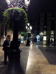 Plaça Sant Jaume at Night (David J. Greer) Tags: city hall casa de la ciutat plaça sant jaume plain saint barcelona spain gothic quarter tree square people night light lights europe european pedestrian