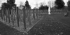 Shot at Dawn..... (MWBee) Tags: nationalmemorialarboretum lichfield staffs shotatdawn peterherbertburden memorial mwbee nikon d750 monochrome blackandwhite bw