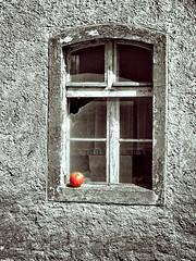 Old window with red apple (kamila2017) Tags: poland dąbrówno window red apple czerwony jabłko okno stare