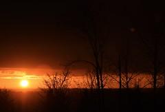 (Ian Threlkeld) Tags: nikon nikonphoto nikonphotography mynikonlife nature mapleridge britishcolumbia beautiful beautifulbc explore explorebc canada sunsets sunset scenery irt bc pnw sky clouds
