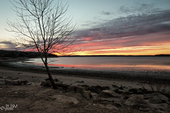 Timeless Harmony (JLDMphoto) Tags: nikon d7200 14mm kansas sunrise lake water tree winter lowwater shore landscape nature waterscape paradise