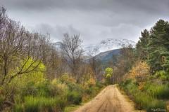 De camino hacia la nieve (mibagui22) Tags: sierra camino nieve miguelbarrios paisaje canoneos550d montaña